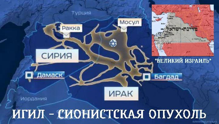 http://communitarian.ru/upload/medialibrary/200/20031543179ad651ae58689cb2315ec6.jpg