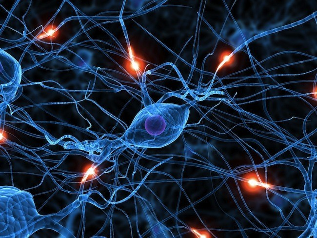 аркаим, синапсы.jpg
