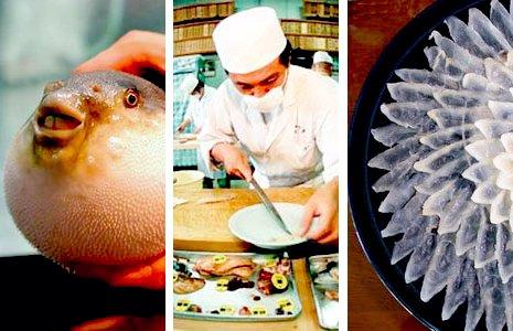 рыба фугу.jpg