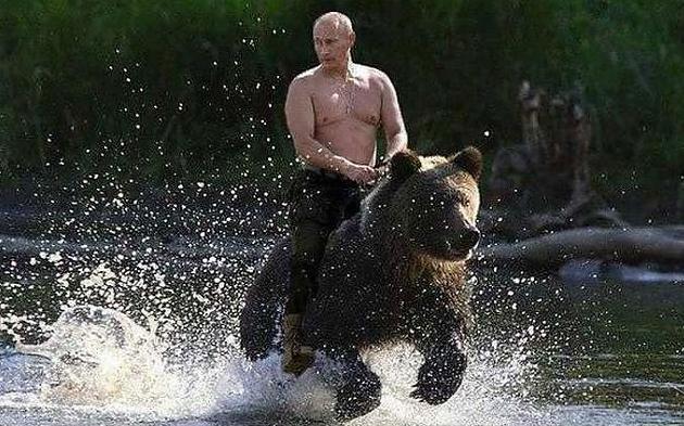 путин на медведе.jpg