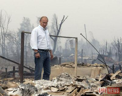 путин, пожары.jpg