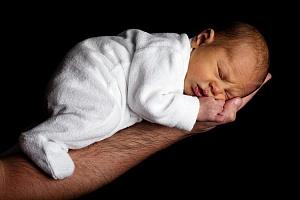 Эффект телегонии доказан: дети получают часть ДНК бывших любовников матери