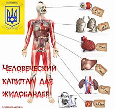 «Украина - не сектор Газы, вы не сможете захватить нас»? Медицинский смысл оккупации Украины: «человеческий ресурс» органов «украинских гоев»?