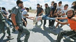 Преступления еврейского нацизма: израильские оккупанты -«поселенцы» напали на палестинскую женщину с детьми
