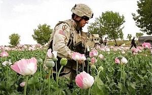 ОДКБ заменит НАТО в Афганистане? Сенсационное заявление Чуркина в ООН...  Вторая Афганская?