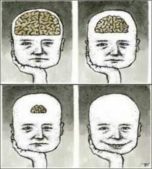 Мозги.jpg
