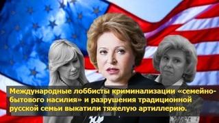 Атака на семью: лоббисты ювенальной юстиции пытаются повторить трюк с Матвиенко